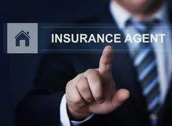 Many Insurance Advisor