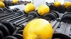 Lemon Grading, Sorting and Packing Machine(Electronic)