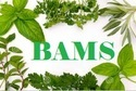 Confirm Bams Admission In Dr. Anar Singh Ayurvedic Medical College