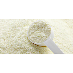 Whey Vanilla Protein Powder