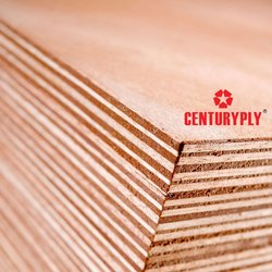 Centuryply Plywood, Size: 87 X 87 Cm, for Furniture