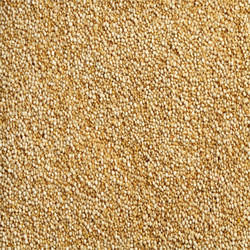 White Quinoa Processed