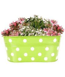Metal Dotted Oval Railing Planter