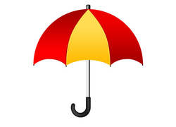 J Handle Polyester Umbrella