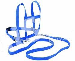 Blue Gisco Horse Belt