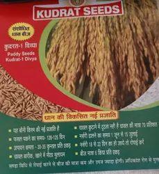 Kudrat -1 Divya Paddy Seeds
