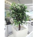 Artificial Ficus Trees 4 Feet