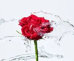 Luxury Rose Water Mist for Personal