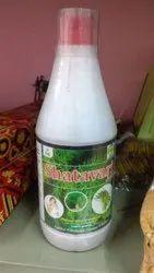 Shatavari Juice