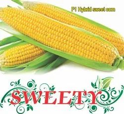 Sweety F-1 Hybrid Sweet Corn Seeds