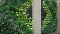 Landscape Vertical Wall
