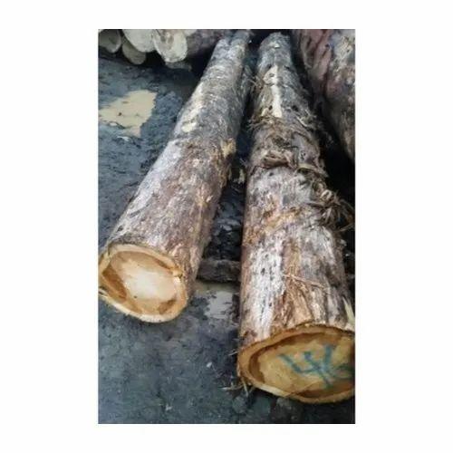 Up To 16 Feet Dark Brown Teak Timber