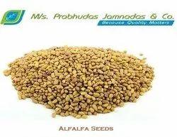Lucurne Seeds