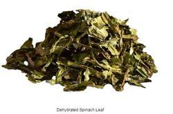 rainbow Green Spinach Leaves, Packaging Size: 5 Kg