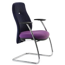 Visitor Stylish Dual Color Chair