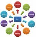 Web Content Management Services