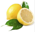 Lemon Juice Concentrate for 400 GLP