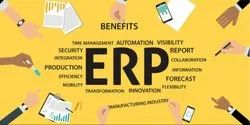 Customize ERP Software