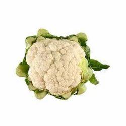 Fresh Cauliflower, Packaging: Plastic Bag or Polythene Bag