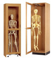 Wooden Skeleton Storage