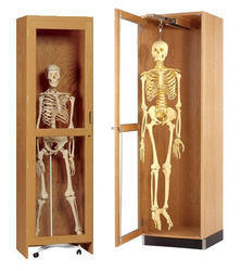 MKD Wooden Skeleton Storage