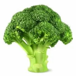 A Grade Organic Broccoli, Packaging Size: 5 Kg, 10 Kg