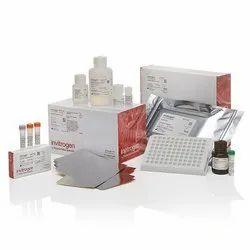 Thermo Scientific Invitrogen QuantiGene Singleplex Assay Kit, For Virus test especially COVID-19