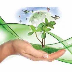 Ayurvedic Herbal Franchise in Shajapur- Madhya Pradesh