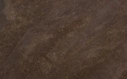 Brown Quartzite for Countertops