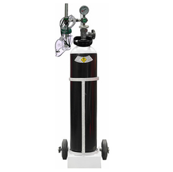 OxyGo Filled Medical Oxygen Gas Cylinder