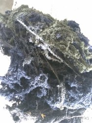 Plain COTTON YARN WASTE, For Cleaning