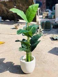 GH/T-33 Plant