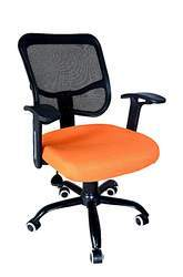 Matrix-1 Mesh Backs Chair