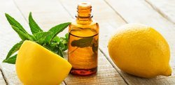 Eucalyptus Lemon Oil
