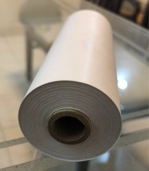 sonography paper roll