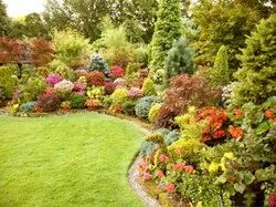Front Yard Home/Residence Garden Landscaping Services, Telangana Hyderabad