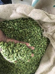 Super Bold Green Cardamom Elaichi, Packaging Type: Gunny Bag, Cardamom Size Available: 7 mm