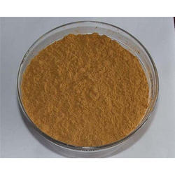 Polypodium Extract