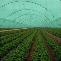 Plastic Green Shed Net, Packaging Type: Plastic Bag