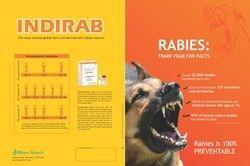 Indirab Vaccine