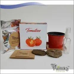 THE PARNIKA  Tomato Plant
