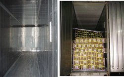 Refrigrated Container Lashing System