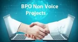 BPO Non Voice Projects