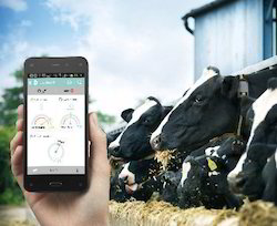 Dairy Farm Management Software