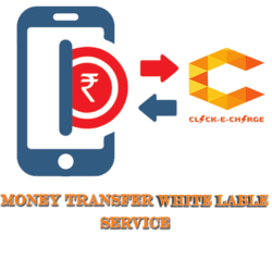 Money Transfer White Label Services