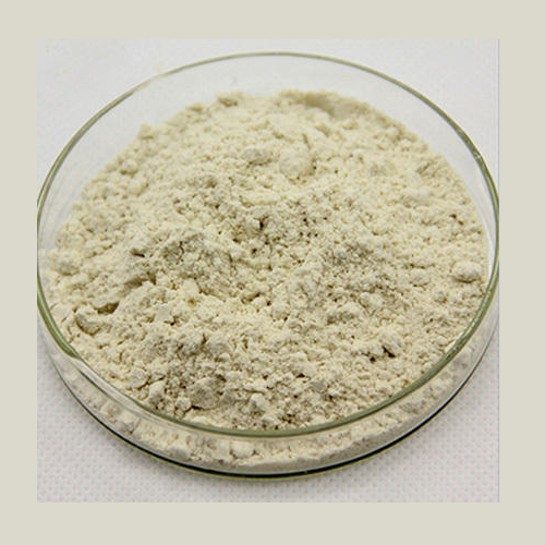 Natural Herbal Extract - Boswellia Serrata Extract Powder