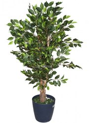 Artificial Ficus Plant