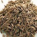 Caraway Seed Oils