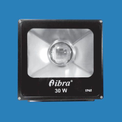 LED Flood Light With Lens