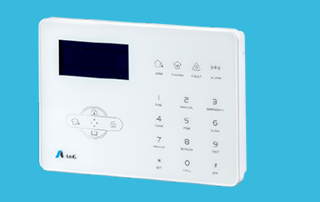 Electronic Security Systems | Ang India Limited | Manufacturer